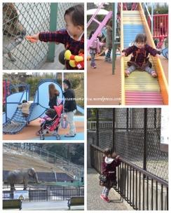 Taman Higashi, Kota Okazaki, Aichi. Taman luaaass, ada danau dan view yg indah, ada kebun binatang kecil di dalamnya. Masuk gratis, main gratis, sepuasnya. ^_^